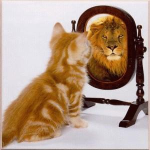Lionmirror 1320.jpg