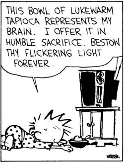 Calvin-worship-TV 3852.jpg