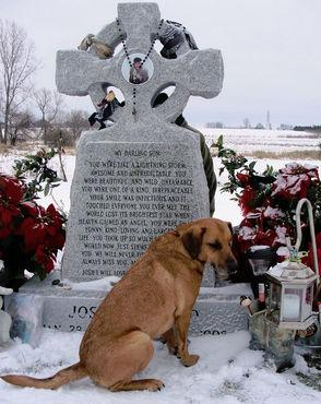 Dog by grave 9698.jpg