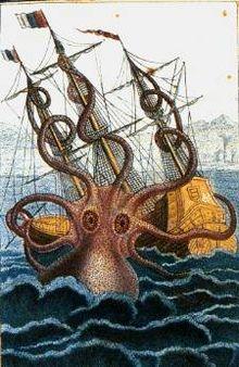 Big octopus 4419.jpg