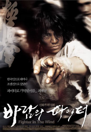 Fighter in the Wind movie poster 5574.png