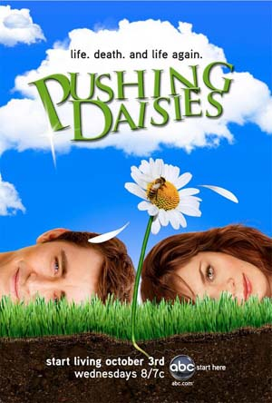 Pushing daisies sm 6389.jpg