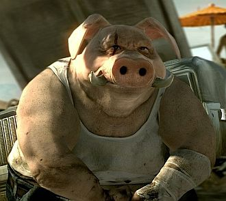 Image Result For Can Pigs Eat