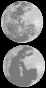 Moon-wabbit.jpg
