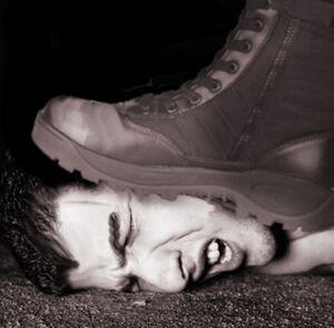 Bootface 7608.jpg