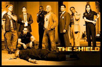The shield1.jpg