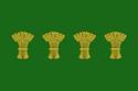 Flag of Saratoga.png