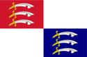 Flag of Adirondack.png