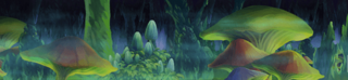 Location Banner 510000017.png