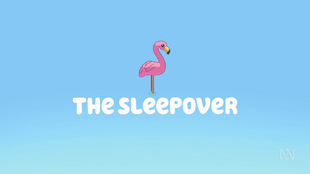 The Sleepover.png
