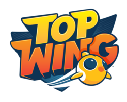 Top Wing.png