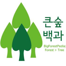 큰숲백과1.jpg
