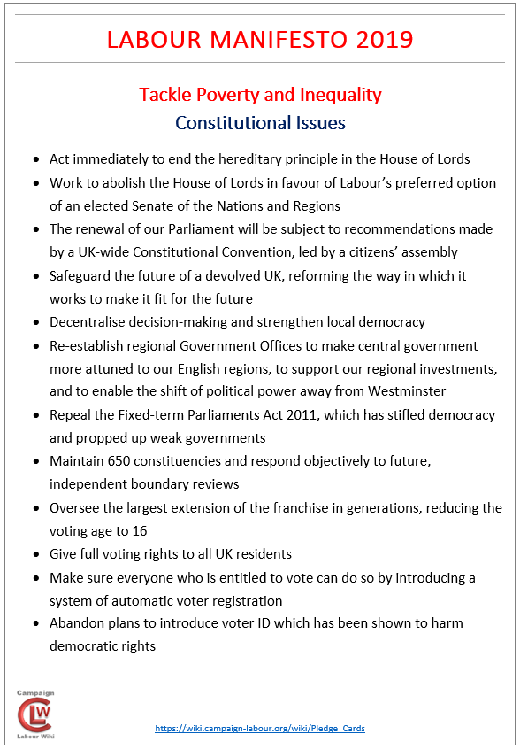 TPI Constitutional Issues.PNG