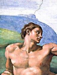 Adam Michelangelo.jpg