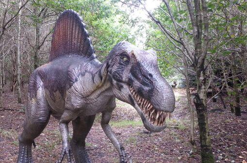 Spinosaurus in bos.jpg