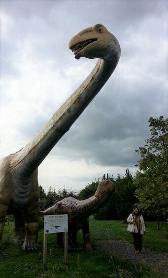 Diplodocus met mens.jpg
