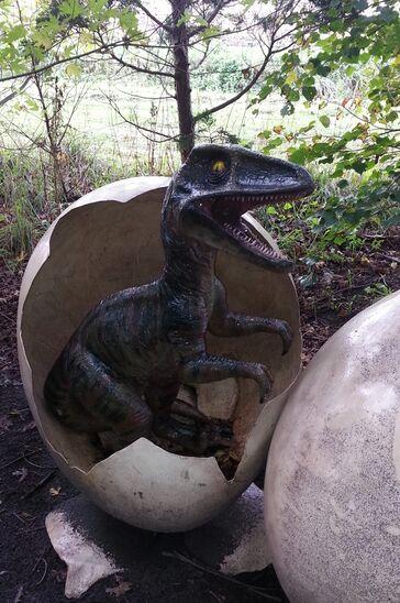 Tyrannosaurus Rex jong uit ei.jpg