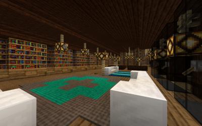 Bookshelves full of books from the server's players