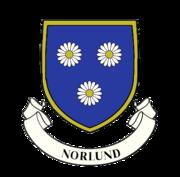 Imagine a Scandinavian flag, black cross, blue corners