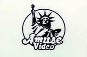 Amuse Video (1989).png