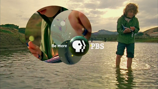 PBS 2009 Observing Child.png
