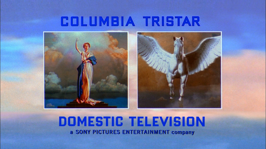 Columbia TriStar Domestic Television (2001) (16x9) 1.png