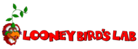 Logo from September 2015 to the Janaury 2016 update.