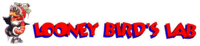 Logo from 1995 to August 1996.
