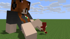 One way in by minecraftgts-d91h3wv.png
