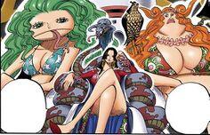 One Piece - CH518 (7).jpg