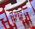 Logo no mito japonesa.png