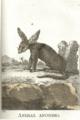 Animal anónimo por Conde Buffon.png