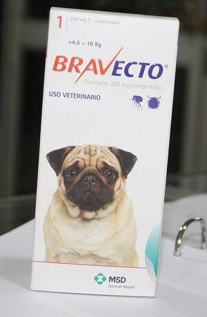 Bravecto vet G 3834 20200520 10kg.jpg