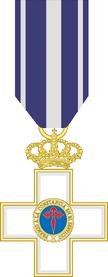 Microwar on Terror Medal.png