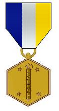 Ne civil war medal.png