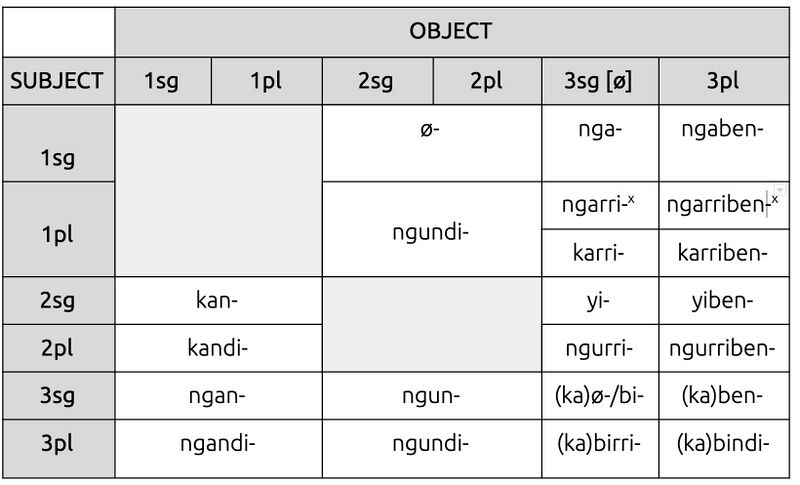 Table of pronominal prefixes omitting dual forms (x=exclusive), Steven Bird