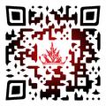 qr-code (3a).png