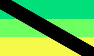 A variation of aporagender flag