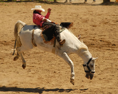 Rodeo A Cavallo.Palio Di Siena Nonciclopedia