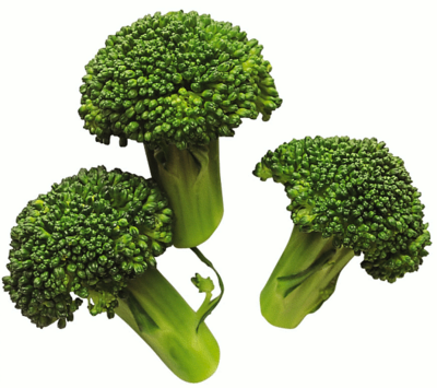 Broccoli-3.png
