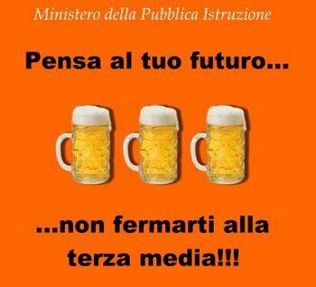 Pubblicità progresso - birra terza media.jpg