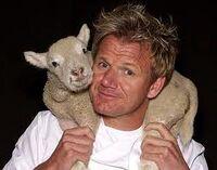 Gordon Ramsay con un agnellino in spalla.jpg