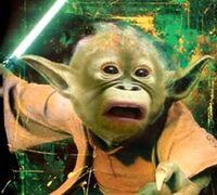 Maestro Yoda scimmiesco.JPG