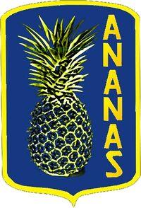 Logo-ananas.jpg