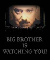 Big Brother is watching you.jpg