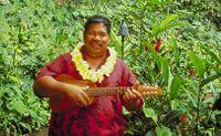 «Ok, il mio articolo sulle cover di Gigi D'Alessio fatte dai suonatori di ukulele delle Hawaii è pronto! Ora mi guardo l'anteprima e…»