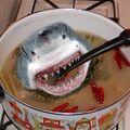Squalo che esce dalla zuppa.jpg