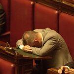 Politico che dorme.jpg