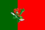 Bandiera del Portogallo.PNG