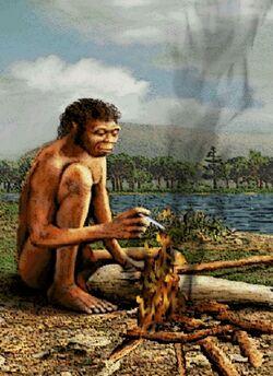 1,5 milioni di anni fa: l'Homo erectus scopre il fuoco.
